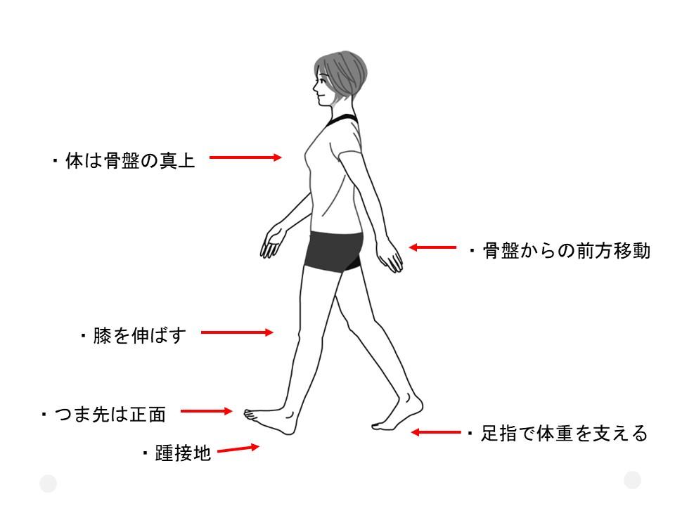 理想の歩き方